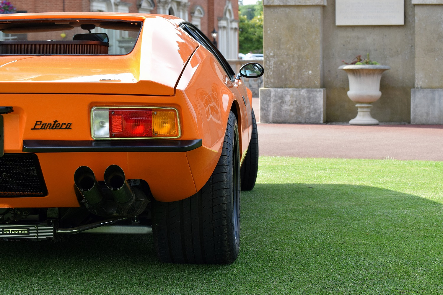 Artistic rear view of the Pantera